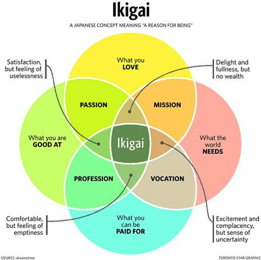 My thoughts on IKIGAI